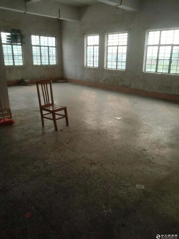 蓬江区杜阮工业区独栋厂房500方出租 价格实在 适合仓库行业图片1