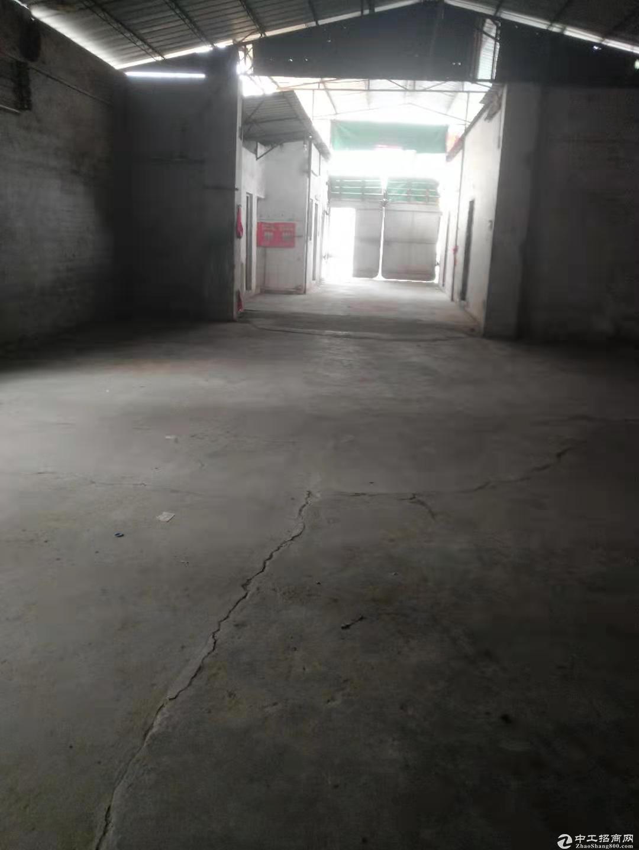 蓬江区杜阮工业区独栋厂房500方出租 价格实在 适合仓库行业图片3