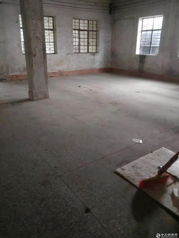 蓬江区杜阮工业区独栋厂房500方出租 价格实在 适合仓库行业