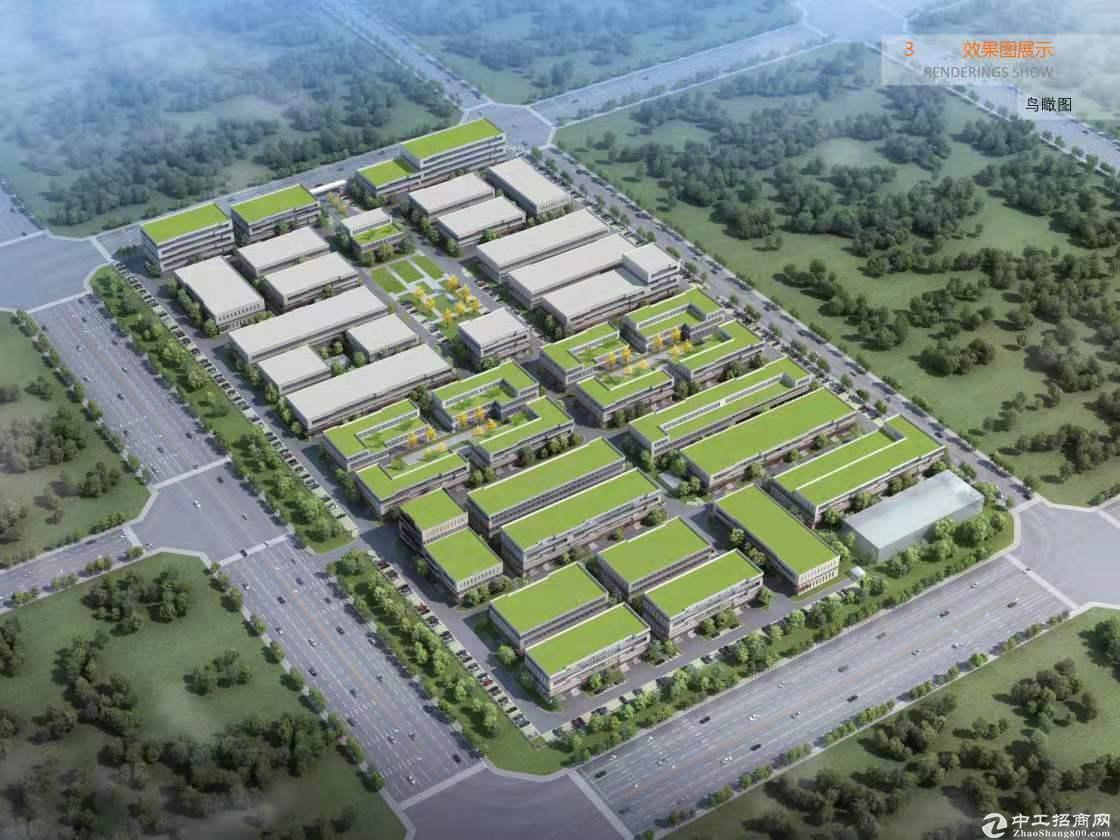 交通便利 国内外通商口岸 政企共造 高端产业港