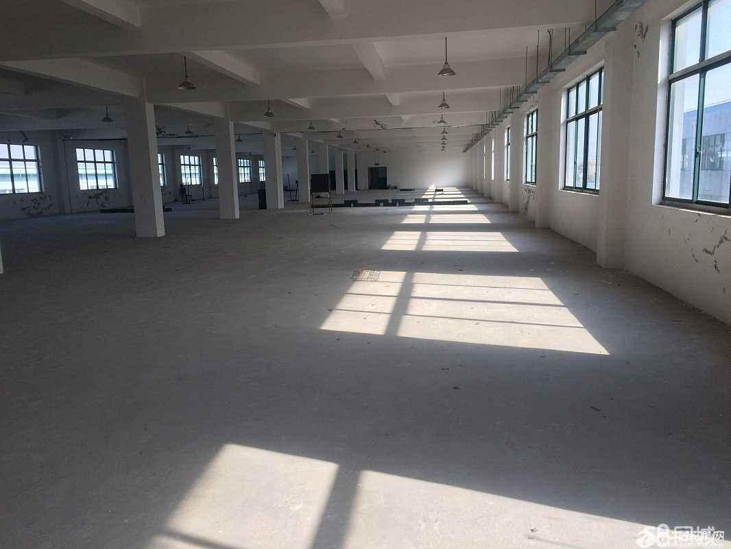 江西省赣州市大余新城工业园产房土地40亩转让