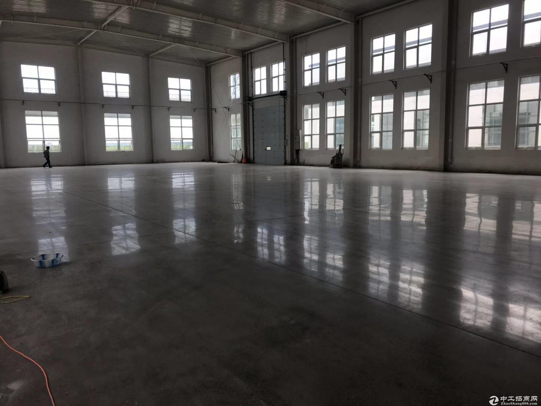 正规工业园区 独栋单层厂房 面积900至3000