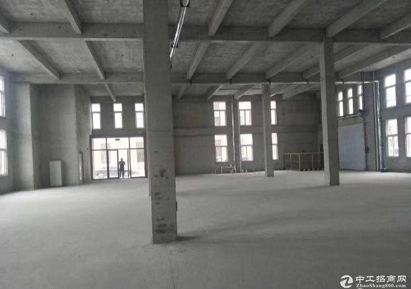胶州大产权标准厂房-图5