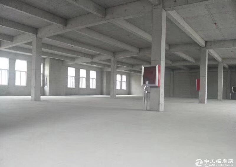 城阳夏庄,大产权标准厂房图片1