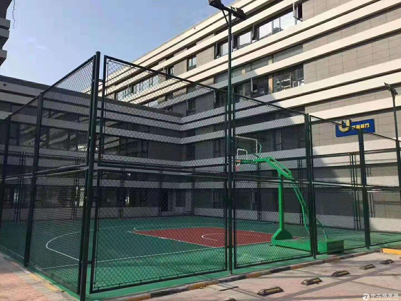 城阳夏庄,大产权标准厂房图片3