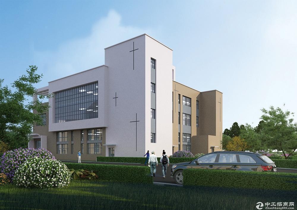 1300平米独栋别墅办公厂房有产权可按揭图片3