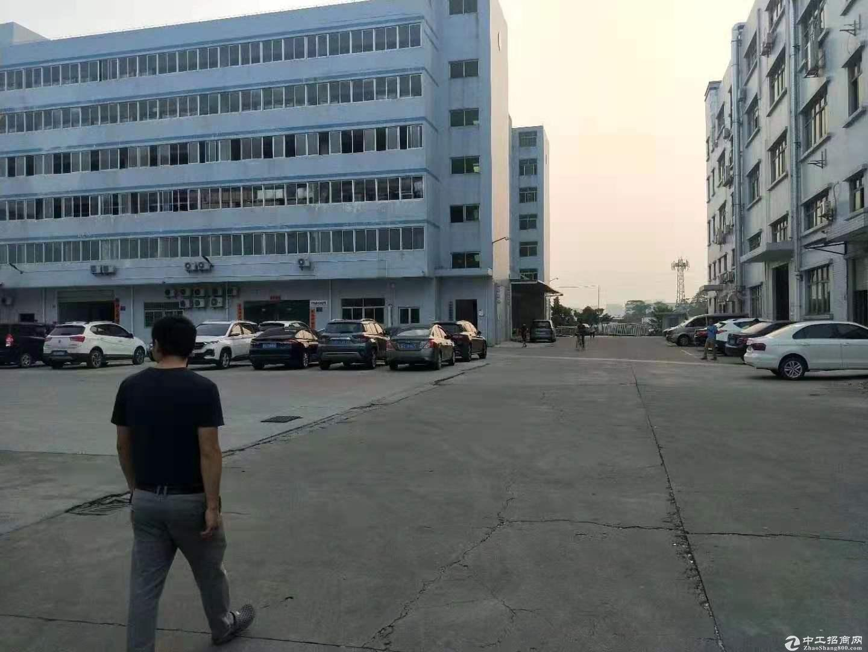 清溪厂房4楼3500平10块每平方大小分租