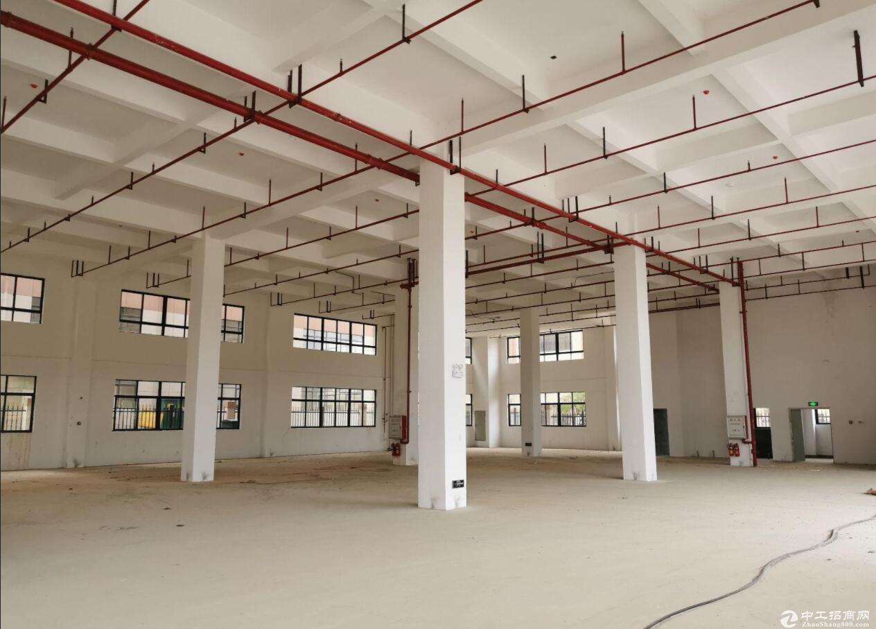肇庆四会厂房出售,超6000平方可定制