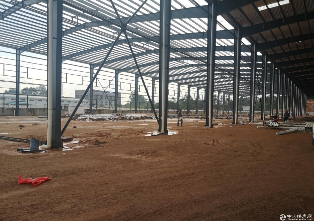 肇庆10000平方单门独院全新钢结构厂房出售