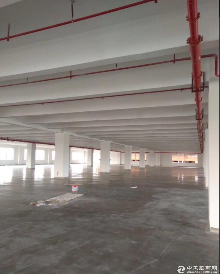 肇庆市 全新标准厂房出售6000平方米 独门独院