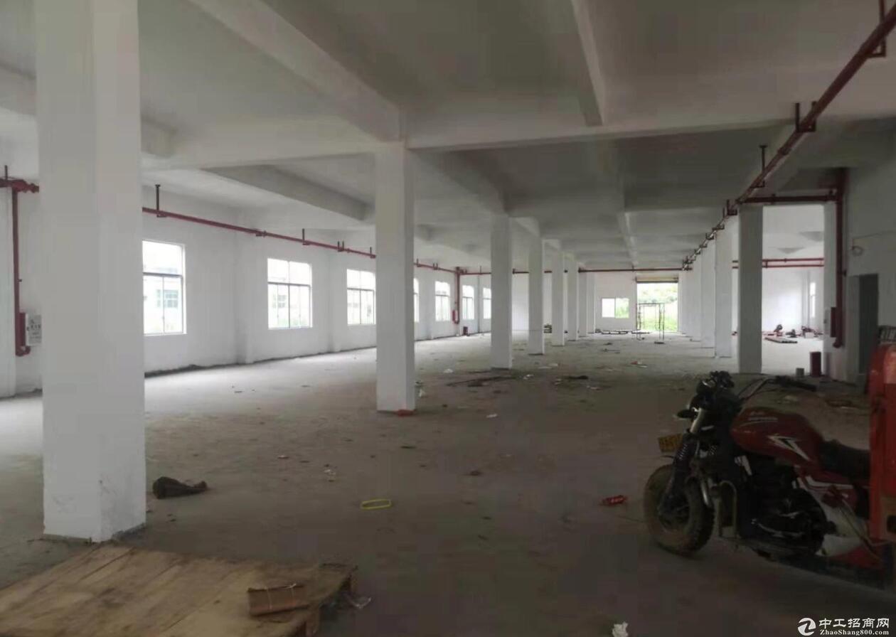 肇庆端州楼上厂房2000平方出售,带5吨货梯