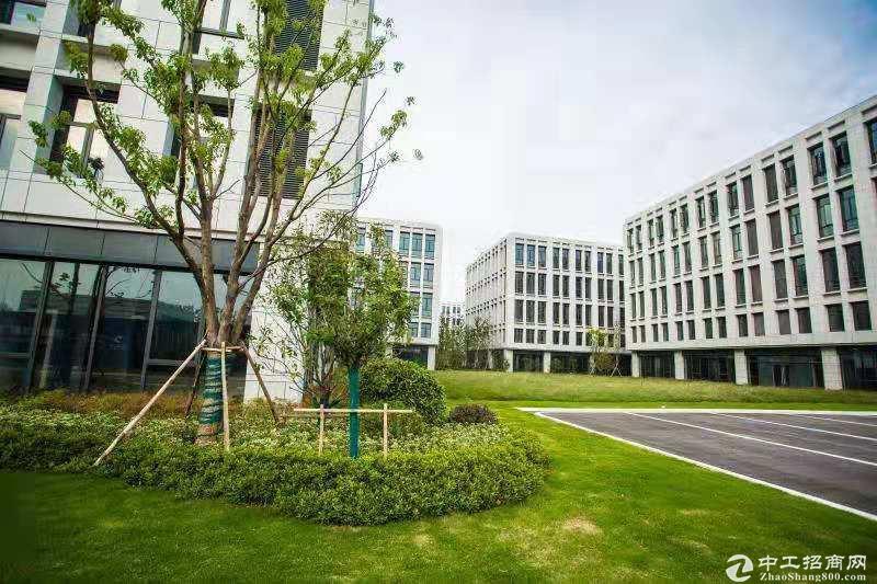 金桥开发区新建标准厂房独栋8000平可分割 办公研发生产仓储