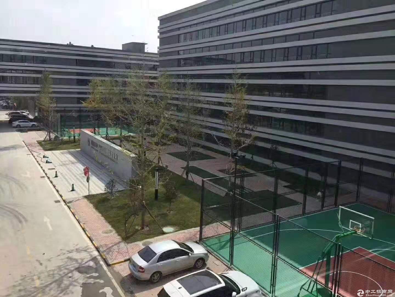 青岛首家标准厂房水电管网齐全火爆招商中图片4