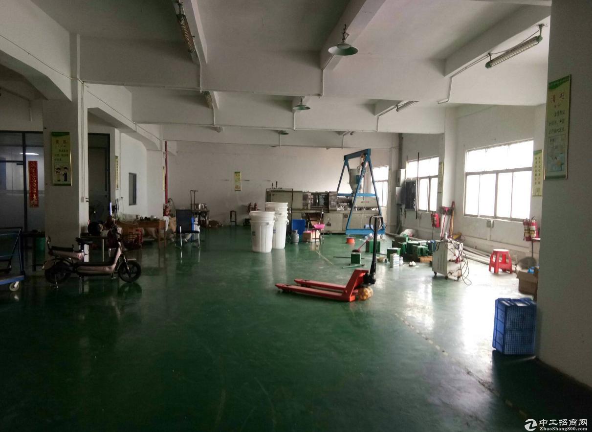 港口美景西路500方厂房仓库出租,形象好,适合各种行业