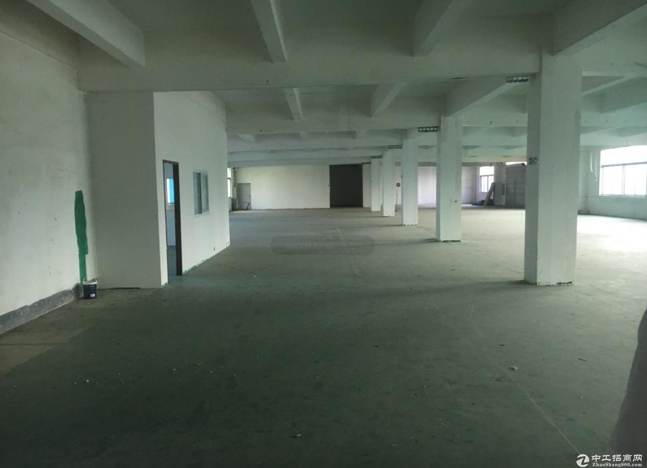 小榄大道中1000方标准厂房仓库出租 面积实在 形象好