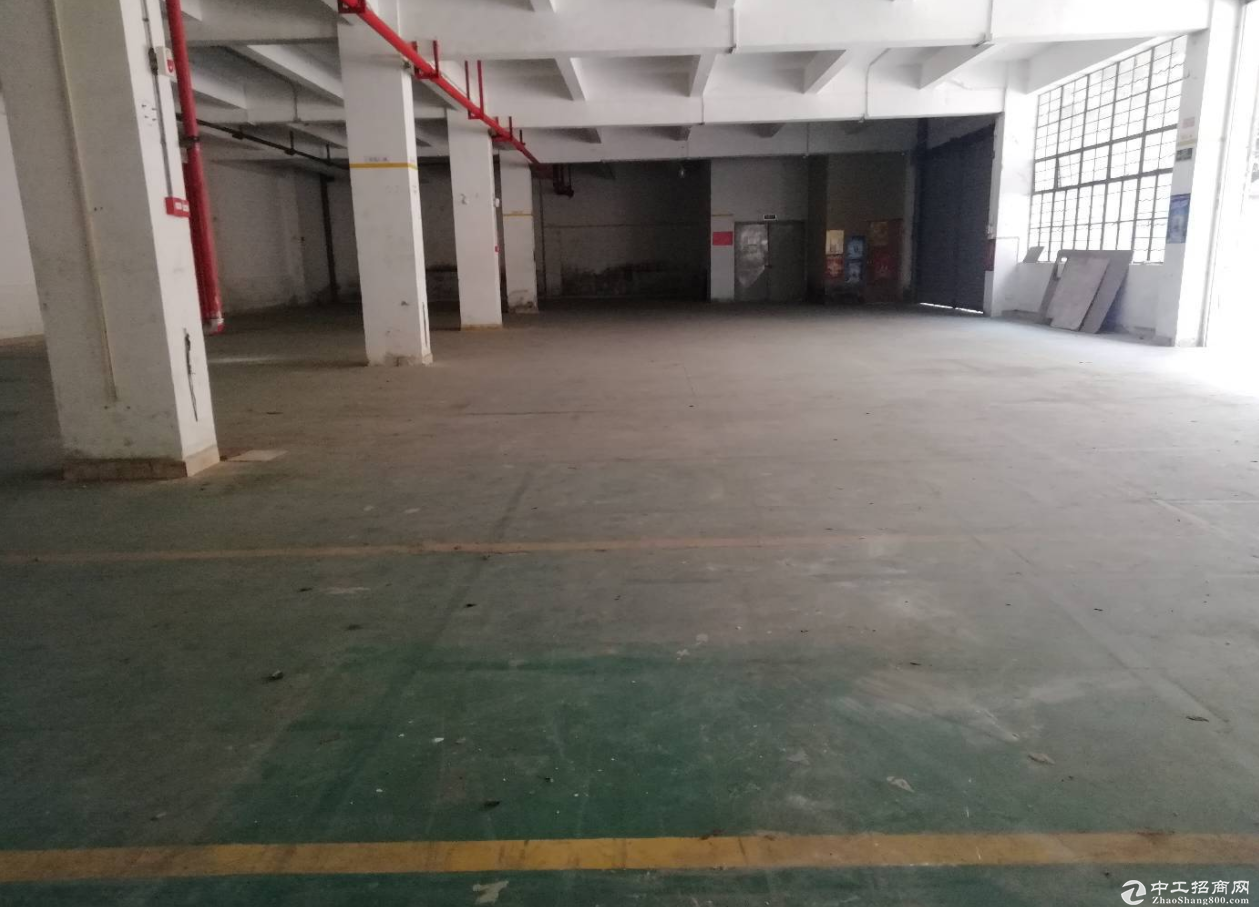 东升东成路一楼800方厂房仓库出租