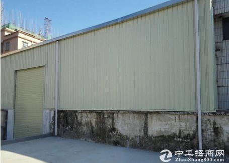 茶山南社原房东单一层钢构厂房出租600平方米适合五金
