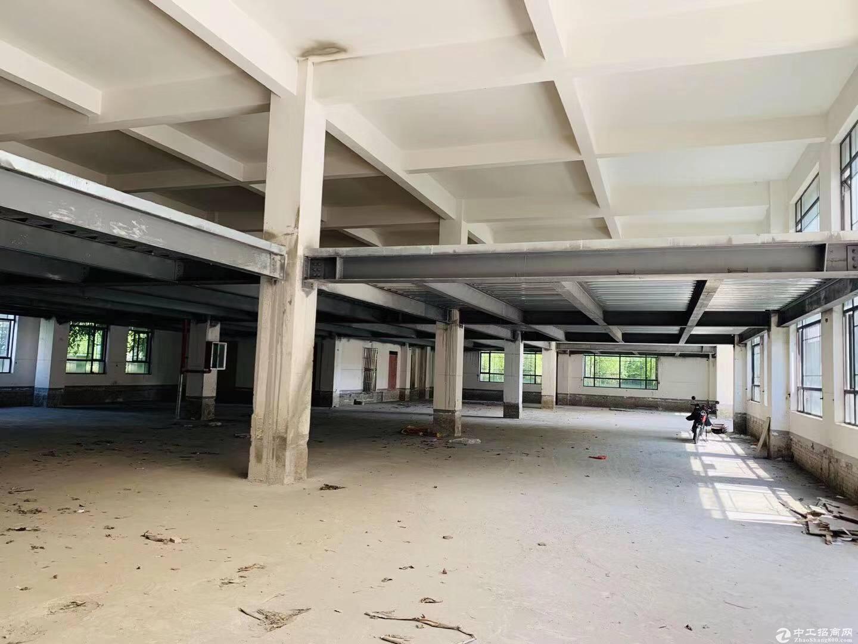 金山亭林园区独栋办公仓储贸易通燃气可住人400平