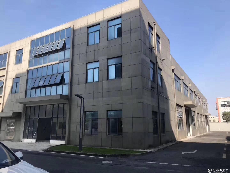 金山亭林工业区独门独院占地12亩建筑4300平3000-图3