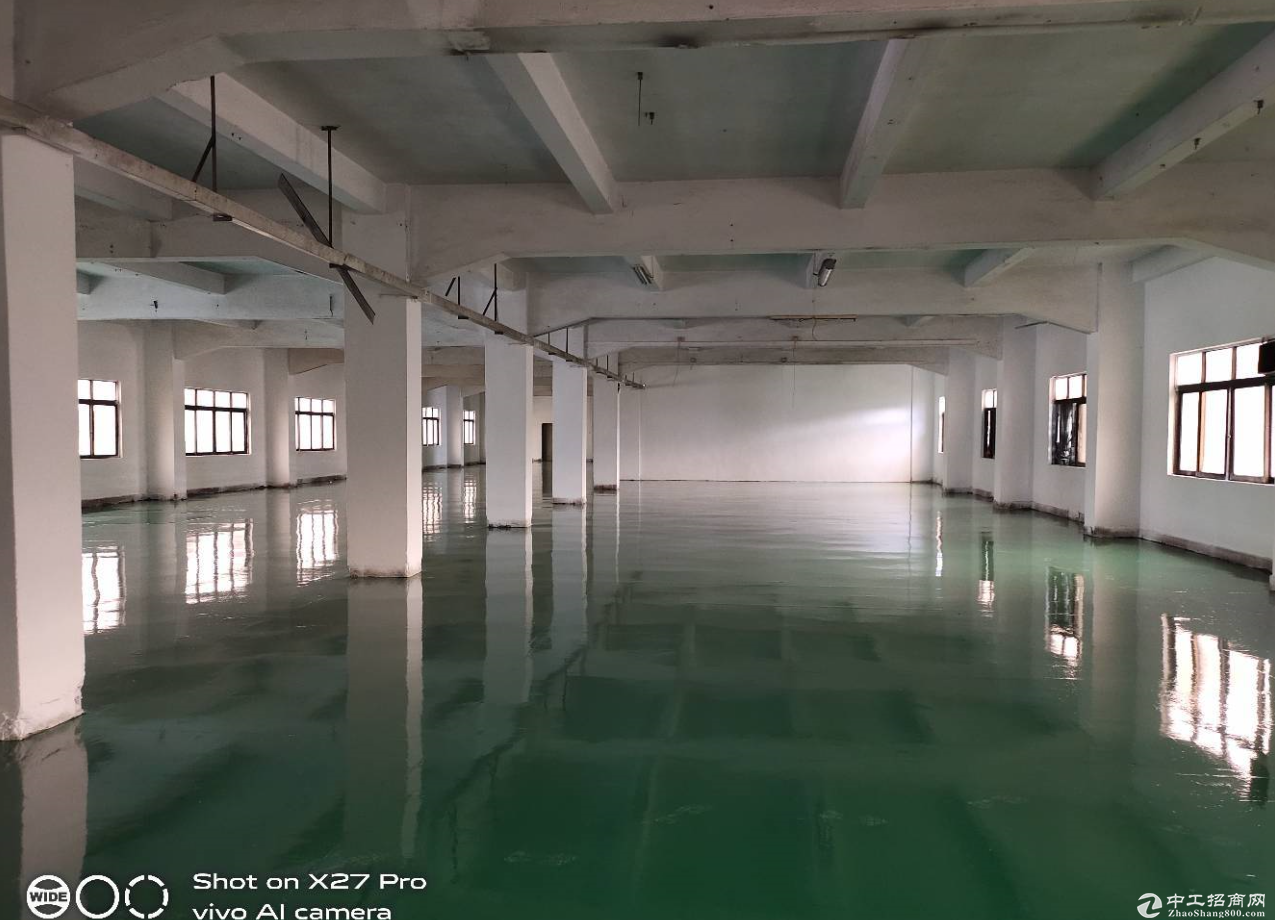 东升市场新出独院厂房600平方 全新地坪漆 低价甩租