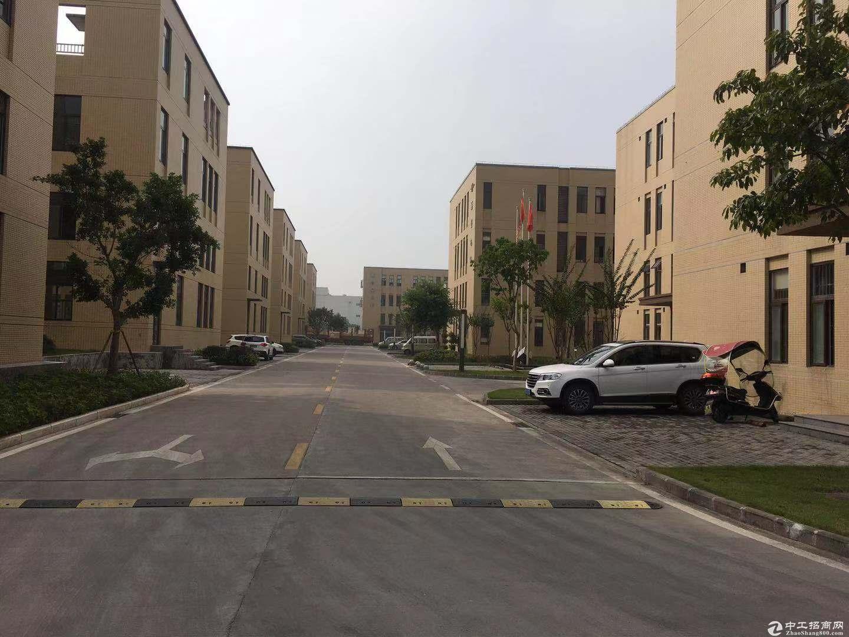 重庆巴南界石园区独栋厂房出售有产权可按揭7层10年-图3