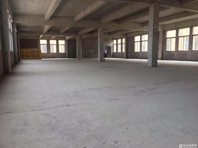 重庆巴南界石园区独栋厂房出售有产权可按揭7层10年-图4