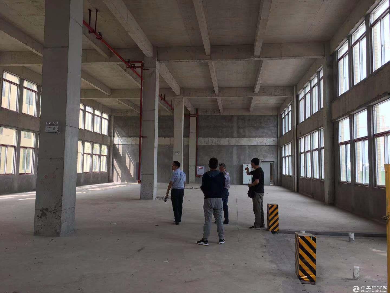 重庆巴南界石园区独栋厂房出售2层半设计首层挑高7.2米可夹层-图3