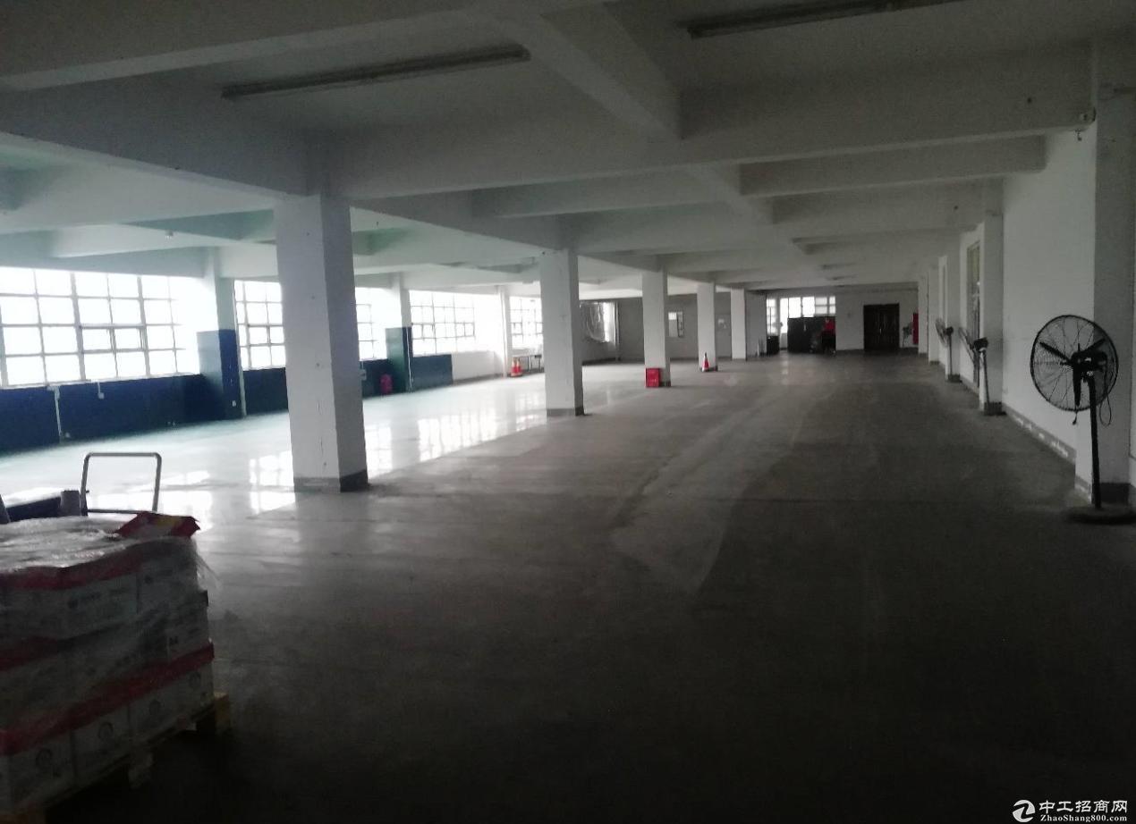 东升同乐二楼厂房600平适合仓储,电商,办公等行业