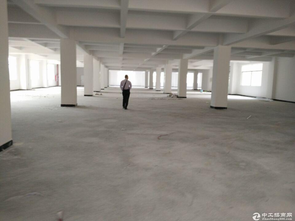 横栏镇茂辉工业区780方标准厂房出租