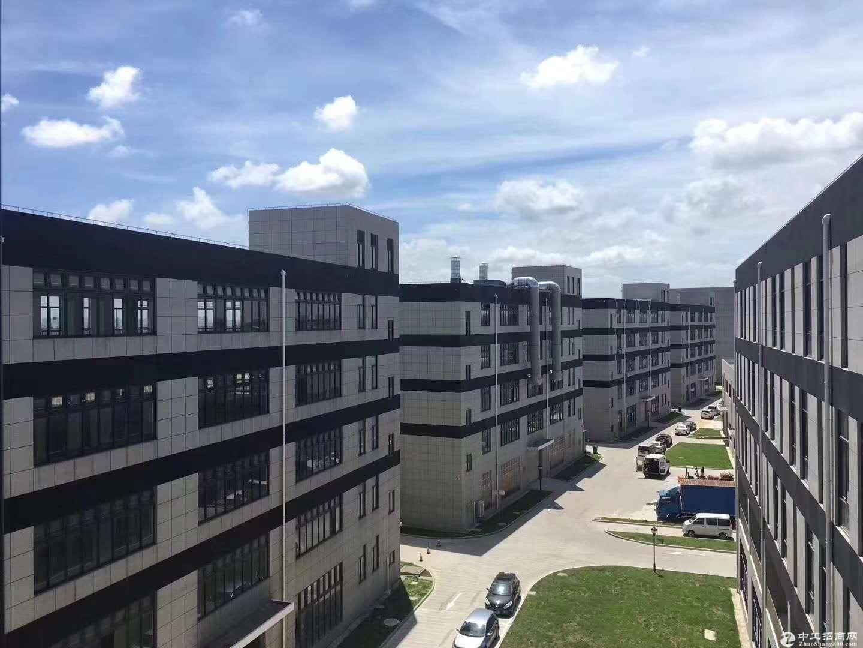 松江分析仪器产业园厂房出租800平起可生产环评