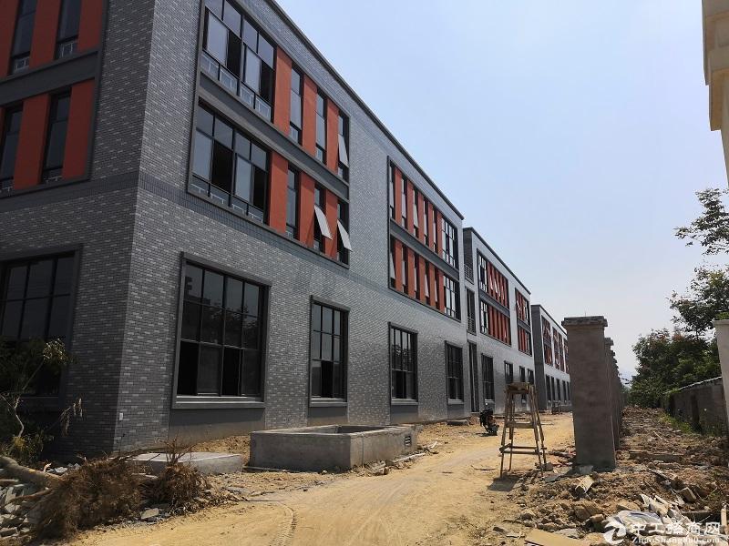 桐庐产业园区独栋厂房出售 独立产权 可按揭 价格实惠