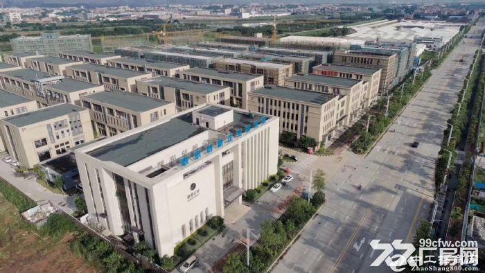 四字头独栋两层标准厂房,一层层高八米-图2