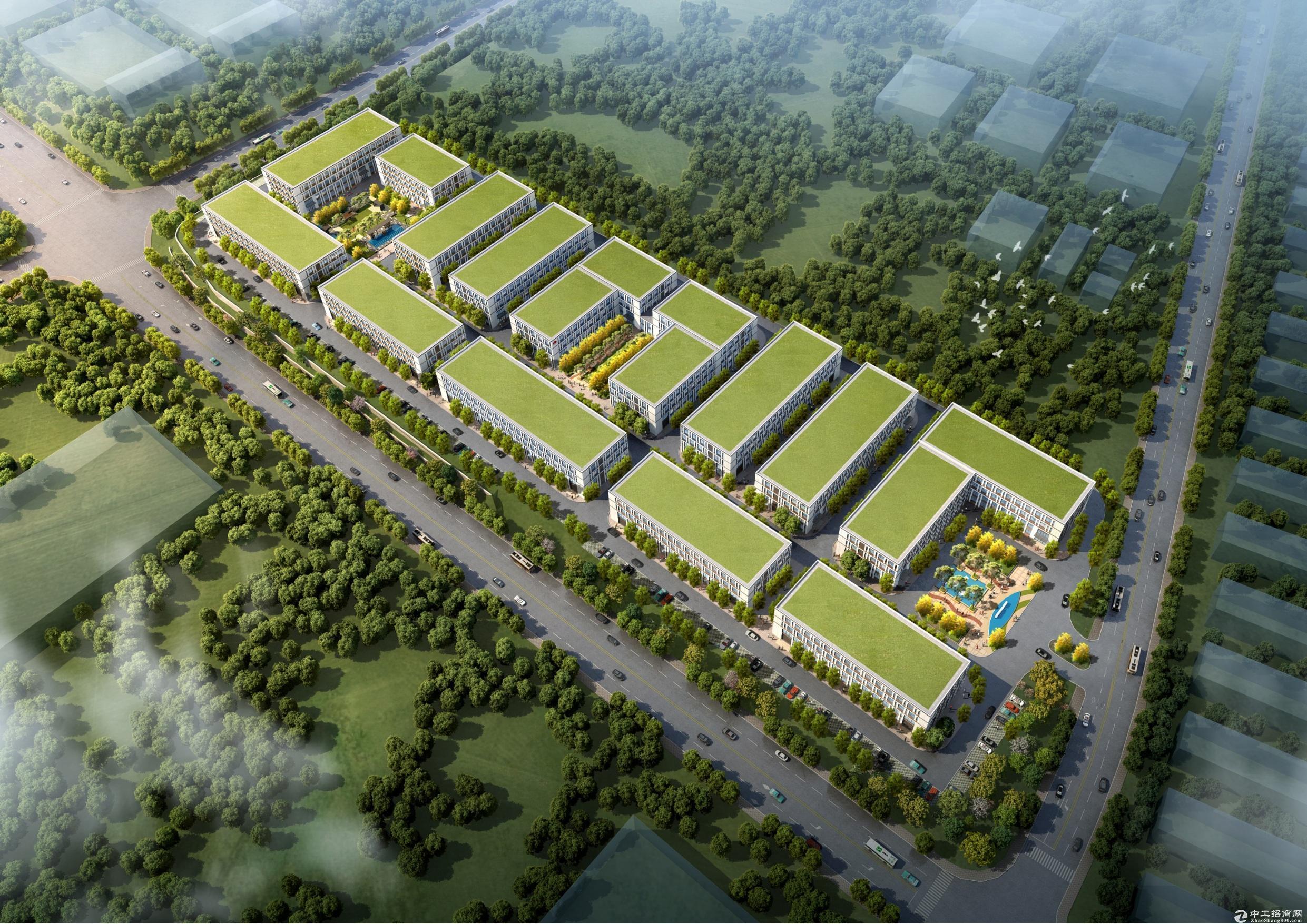 江门鹤山新区工业地,欢迎外迁企业,层高8米水泥钢混结构