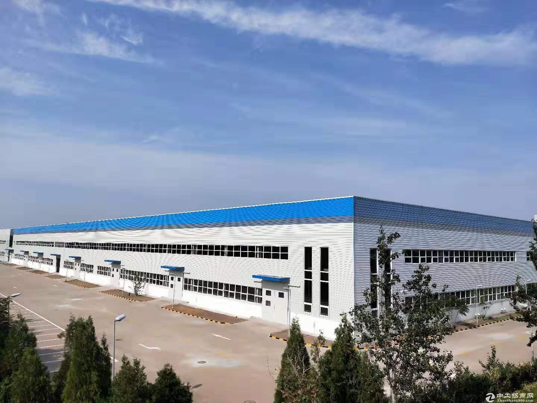 空港经济区10000平米丙二类高台库、厂房出租,可分租-图4