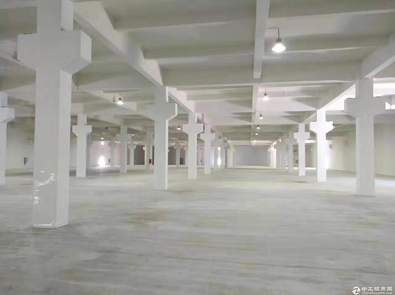 阳江高新区德尔工业园厂房/仓库出租-图2
