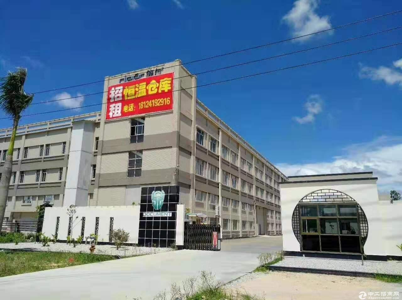 阳江高新区德尔工业园厂房/仓库出租-图5