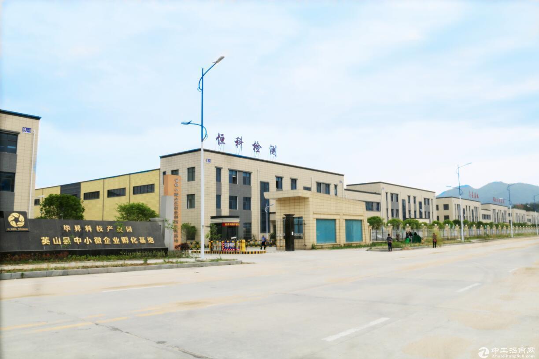 英山县1.2万平独栋厂房共3层 有租金补贴