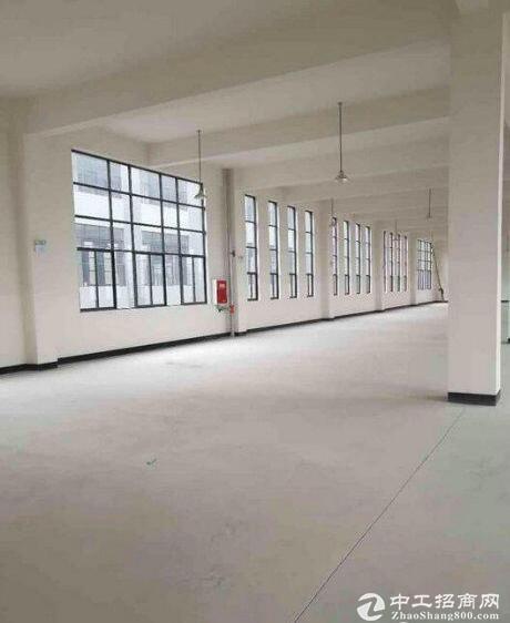 英山经济开发区,2000平框架厂房,可分租-图4