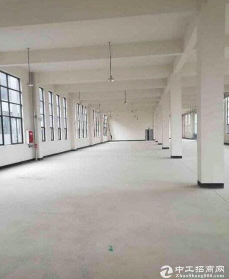 英山经济开发区,2000平框架厂房,可分租-图3