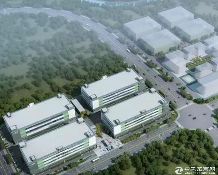 新建5.5万平米高标准厂房,开发商直租-图2