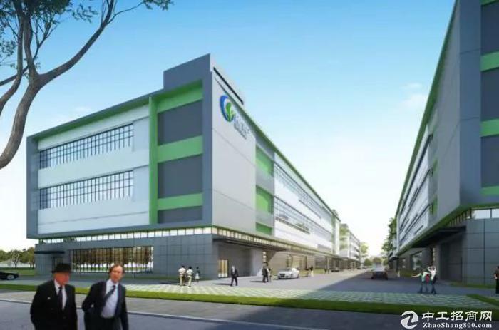 新建5.5万平米高标准厂房,开发商直租-图4