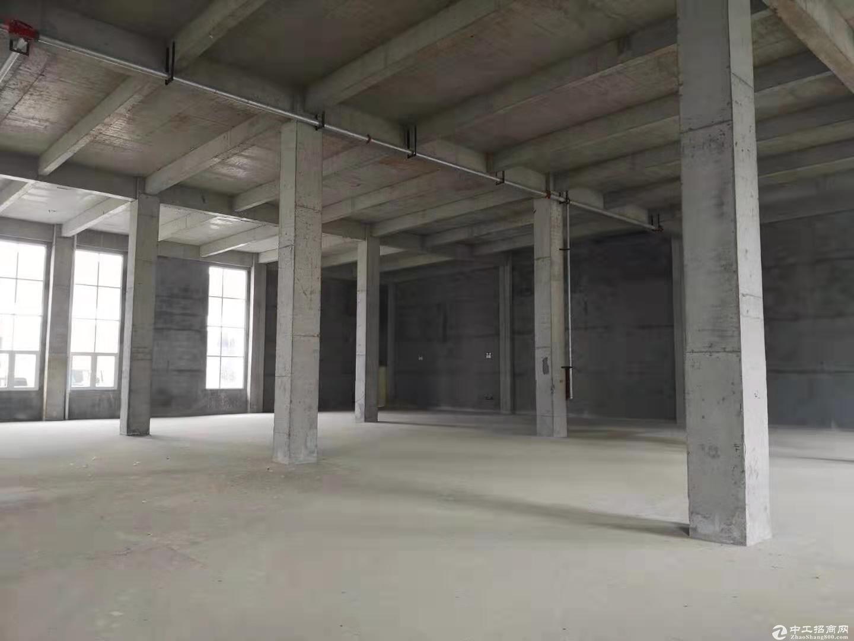 【可以分割产权的厂房】高12米-图3