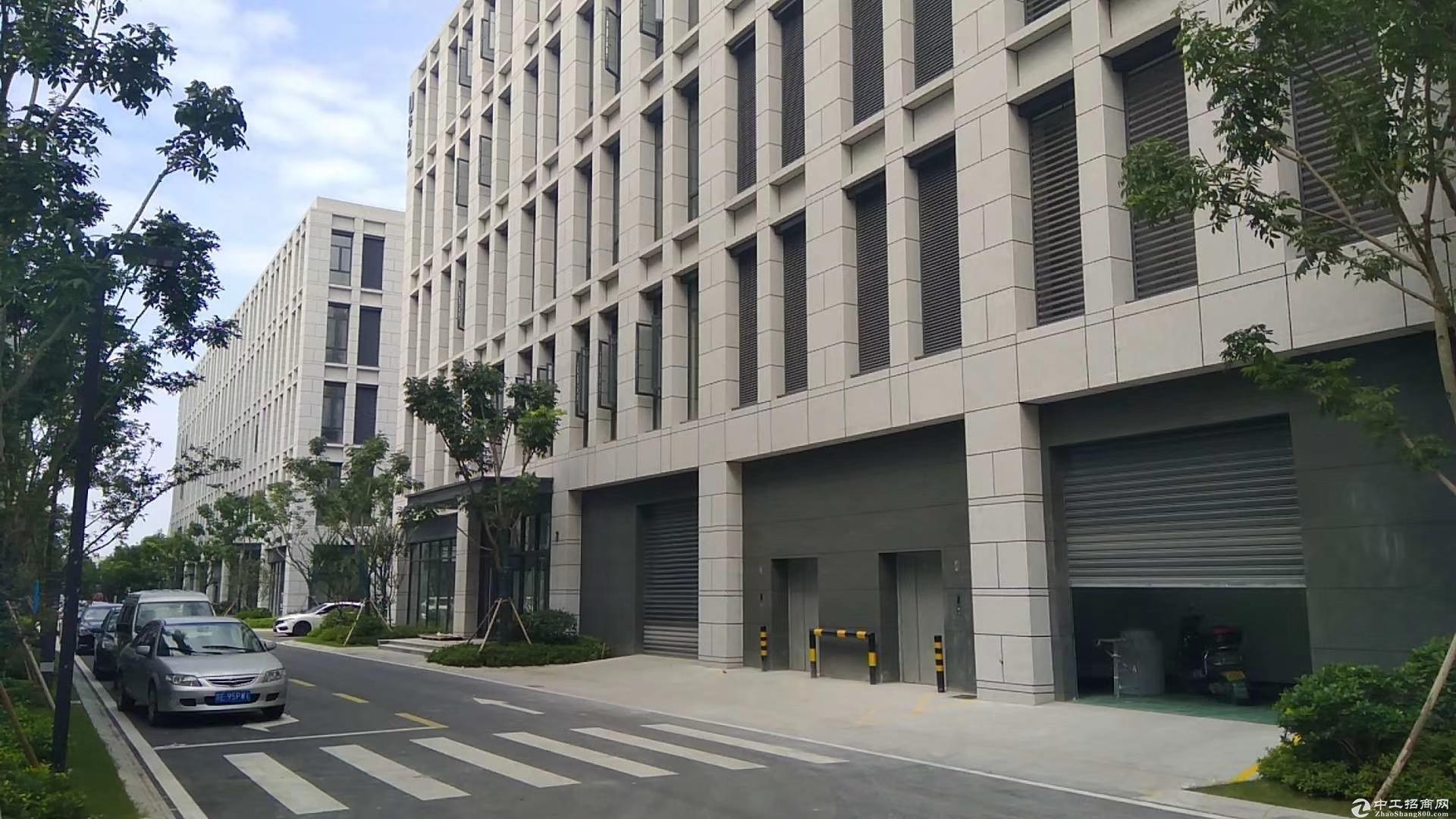 非中介 1300平单层一楼标准厂房 工业用地 首付3成