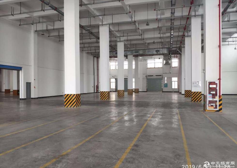 英山毕昇科技园 3000平标准厂房出租,价格优惠