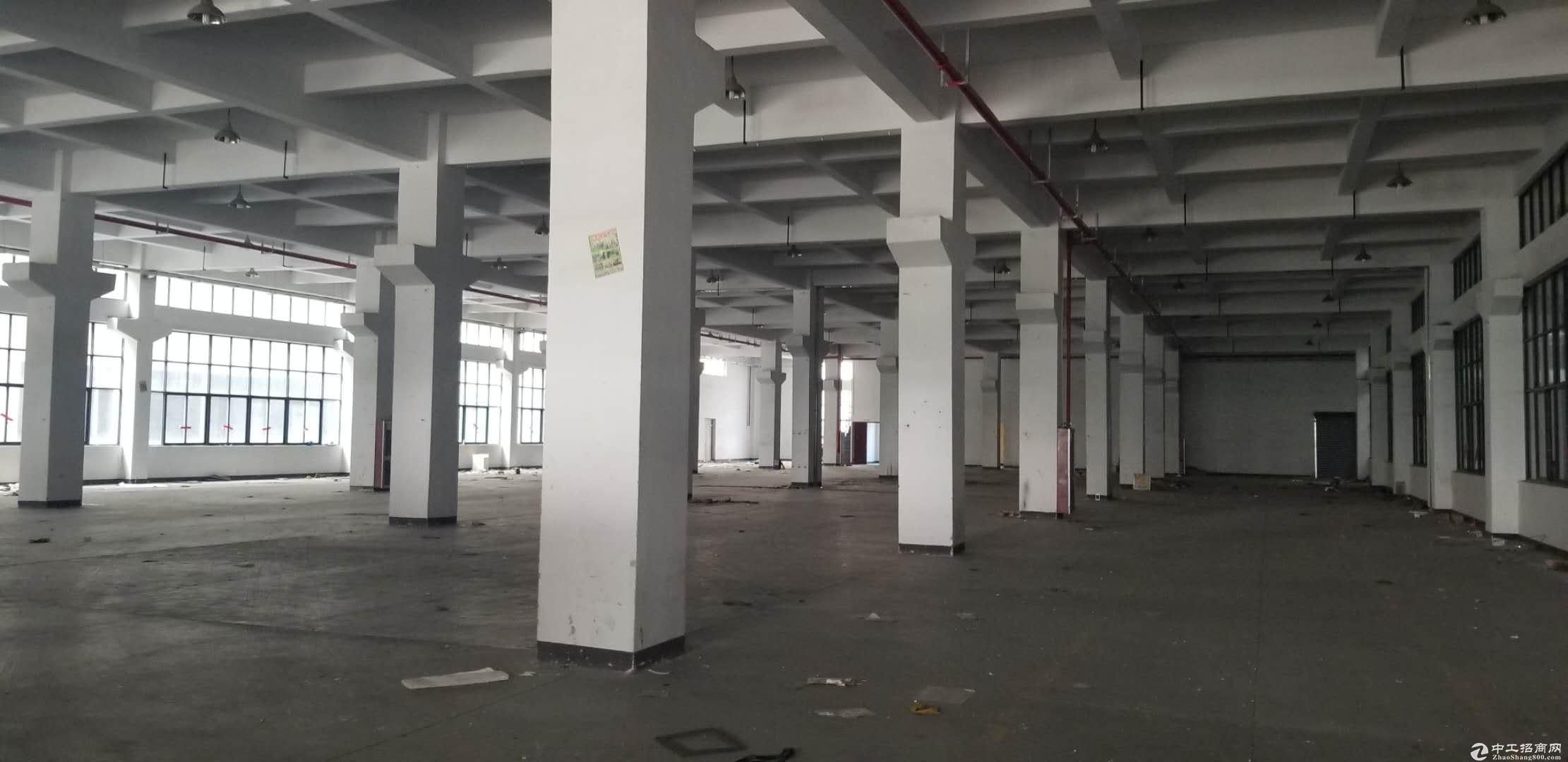 星桥标准厂房出租2000方交通便利