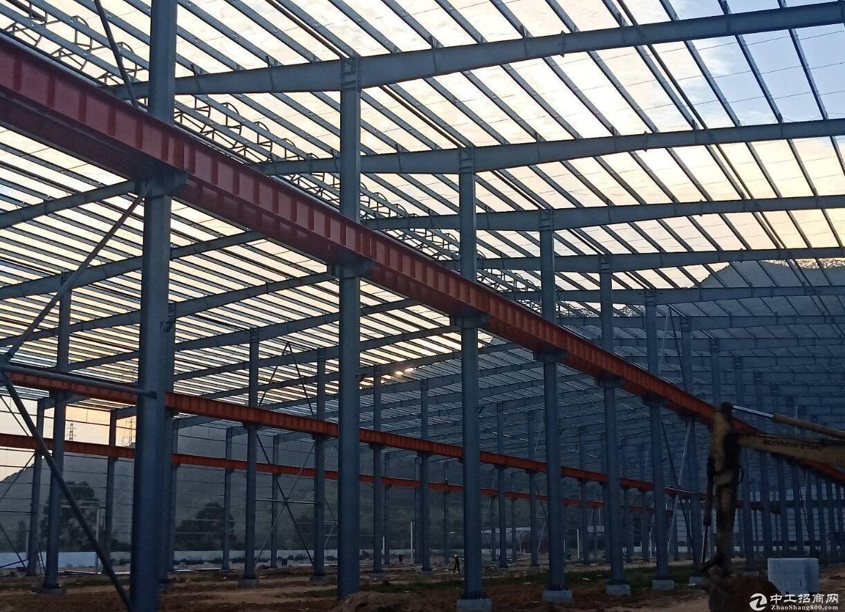 肇庆市全新滴水12米单一层厂房70000平
