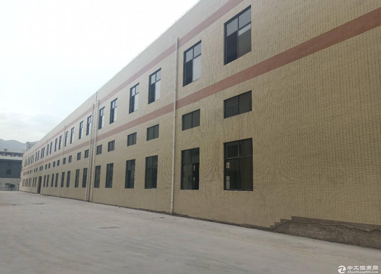 肇庆市金利镇全新标准厂房两层出租