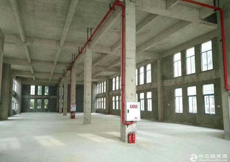 出售茶园南独栋厂房,可环评带产权可按揭