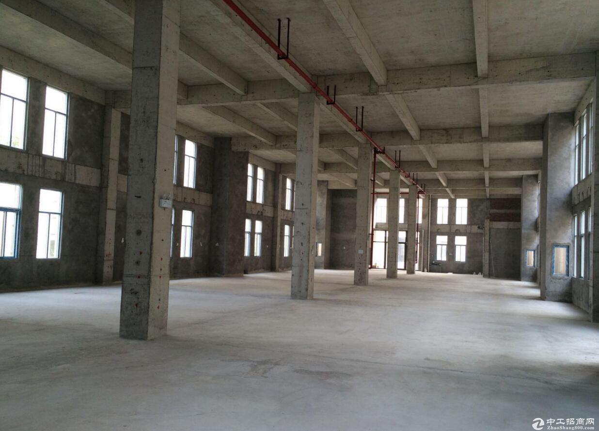单排柱厂房布局,标准化园区配套,首付低至三成,可以贷10年