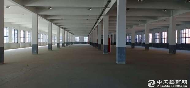 星桥标准厂房出租3500方,交通便利价格优